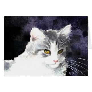 Argent somnolent et carte blanche de chaton