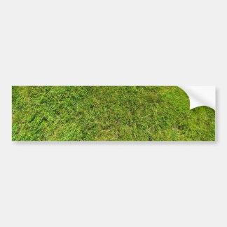 Arrière - plan de texture de motif d'herbe verte autocollant de voiture