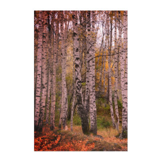 Art acrylique de mur de photo d'automne de Forrest