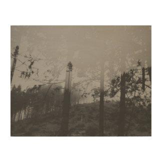 Art brumeux noir et blanc de mur en bois de la