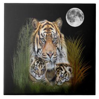 Art d'animal de tigre grand carreau carré