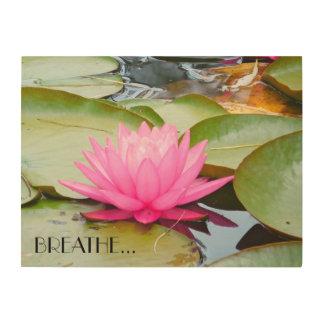 Art de Lotus…