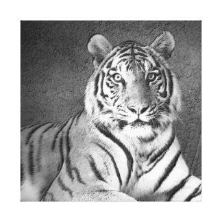 Art de tigre sibérien en noir et blanc - toile toiles