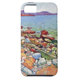 ART Case-Mate iPhone 5 HOESJES
