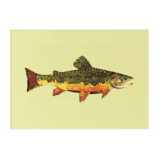 Art Mural En Acrylique La belle truite de ruisseau