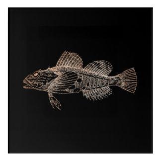 Art Mural En Acrylique L'or profond de rose de rose de noir de poissons