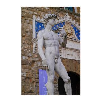 Art Mural En Acrylique Statue Florence Italie de Signoria de della de