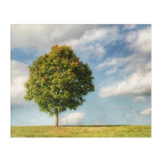 Art Mural En Acrylique Un arbre solitaire complètement de la vie avec un