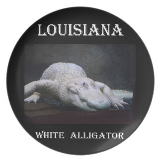 Assiette Alligator blanc de la Louisiane nouveau