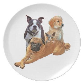 Assiette Bande de chien avec le chat