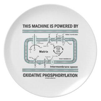 Assiette Cette machine actionnée par phosphorylation