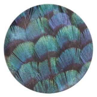 Assiette Conception bleu-vert de plume de faisan
