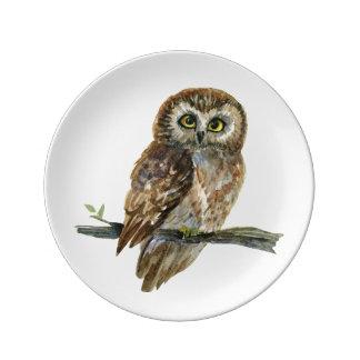 Assiette En Porcelaine A vu pour affûter la peinture d'aquarelle de hibou
