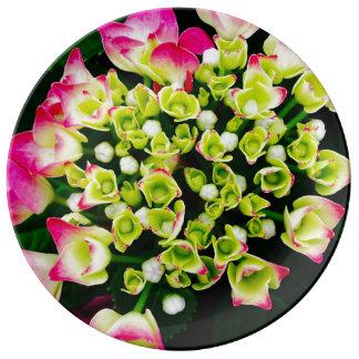 Assiette En Porcelaine Inspiration d'hortensia