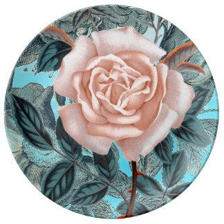 Assiette En Porcelaine Le rose saumoné minable s'est levé