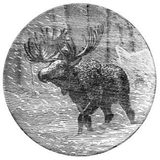 Assiette En Porcelaine Orignaux dans l'emblème de neige