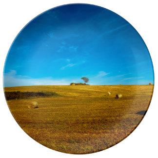 Assiette En Porcelaine Paysage de l'Italie avec l'arbre