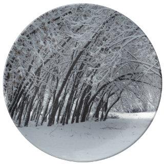 Assiette En Porcelaine Plat décoratif de porcelaine d'arbres d'hiver de