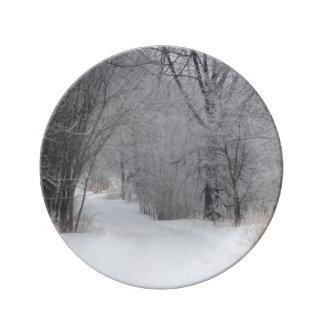 Assiette En Porcelaine Solitude d'hiver
