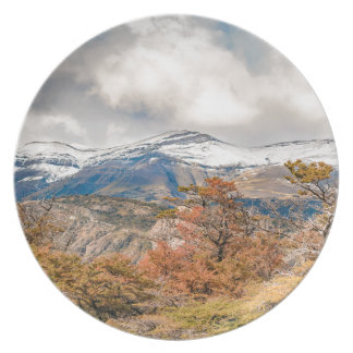 Assiette Forêt et montagnes de Milou, Patagonia, Argentine