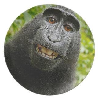 Assiette Grimacerie du singe