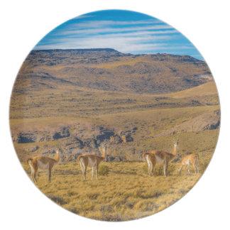 Assiette Groupe de vigognes au paysage Patagonian