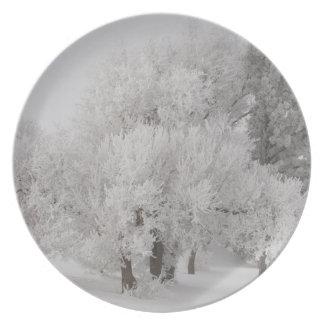 Assiette L'hiver Frost a couvert des arbres