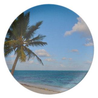 Assiette Palmier sur une plage