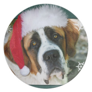Assiette Photo de chien de St Bernard de Noël