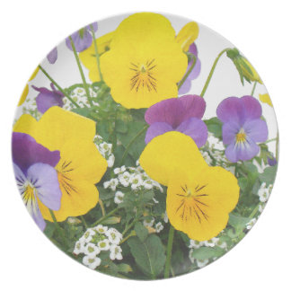 Assiette Photographie florale de jardin de fleurs
