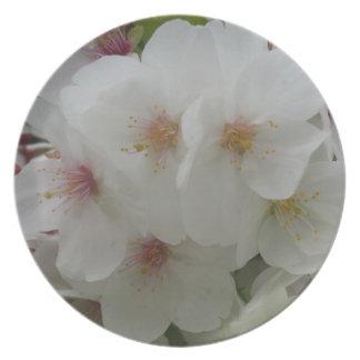 Assiette Plat de mélamine de fleur blanche