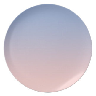 Assiette Rose-clair au plat bleu de mélamine d'Ombre
