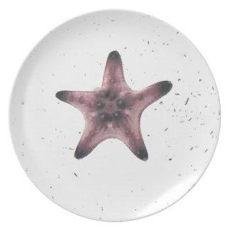 Assiettes En Mélamine Étoiles de mer sur le motif blanc de minimalisme