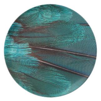 Assiettes En Mélamine Fermez-vous des plumes bleues d'aile