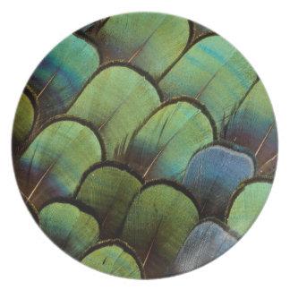 Assiettes En Mélamine Motif vert de geather de faisan