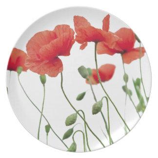 Assiettes En Mélamine pavot-fleur