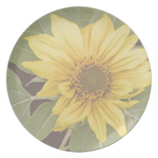 Assiettes En Mélamine Photographie florale de jardin de fleurs