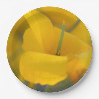 Assiettes En Papier Champ des pavots de floraison