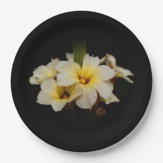 Assiettes En Papier Fleurs de satin