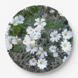 Assiettes En Papier Fleurs sauvages blancs