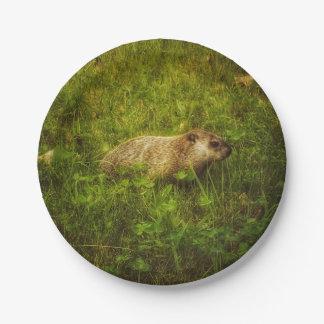 Assiettes En Papier Groundhog dans des plats d'un champ
