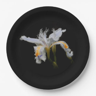 Assiettes En Papier Iris crêté