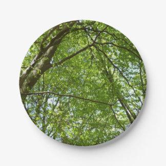 Assiettes En Papier L'auvent du ressort part de la scène verte de