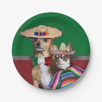 Assiettes En Papier Le chiwawa mexicain poursuit les plaques à papier