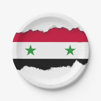 Assiettes En Papier Le drapeau de la Syrie