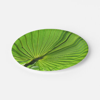 Assiettes En Papier Plaque à papier - paume tropicale