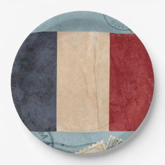 Assiettes En Papier Plaques à papier de drapeau de la France