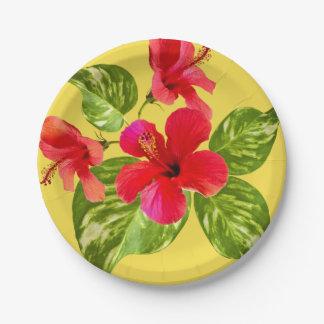Assiettes En Papier Plaques à papier de paradis tropical