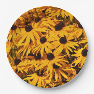Assiettes En Papier Rudbeckia Fulgida/Coneflower orange