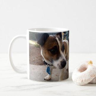 Attraction de Fox Terrier, tasse de café blanc